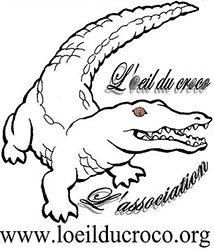 Association l'œil du croco